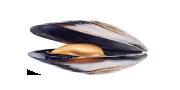 Μύδια | Lovefish